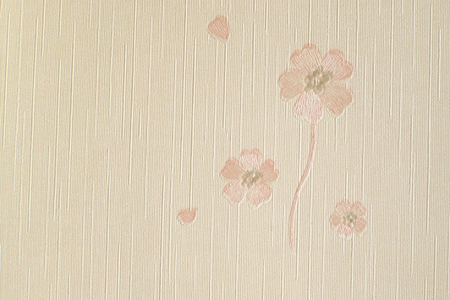 Wallpaper Window Blinds Philippines