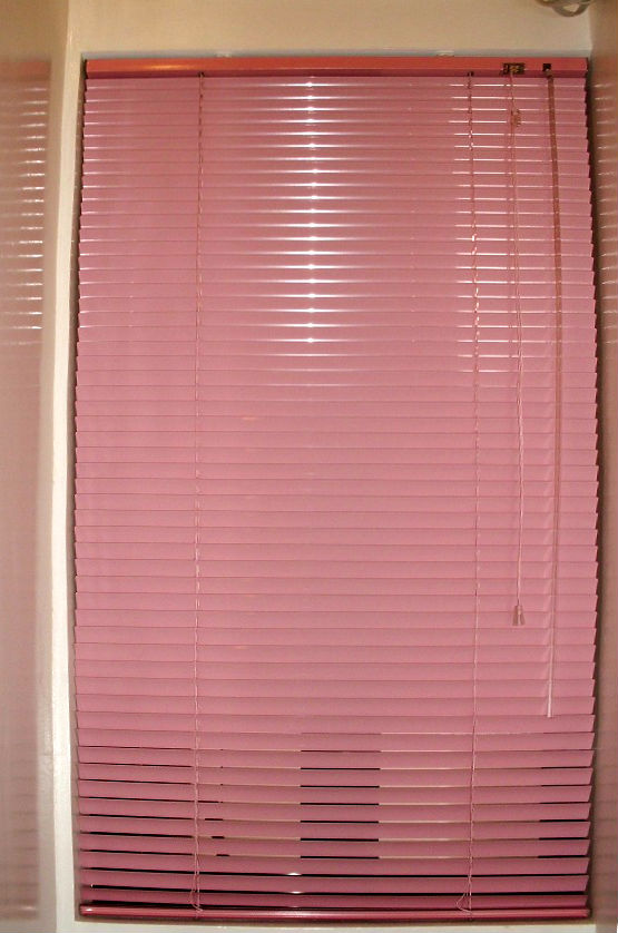 Mini Blinds - Pink for s Girl Room