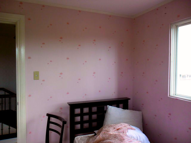 Installed Vinyl Wallpaper In Varsity Hills, Loyola Heights, Quezon City,  Philippines