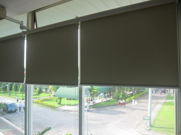 Installed Roller Blinds in a Library