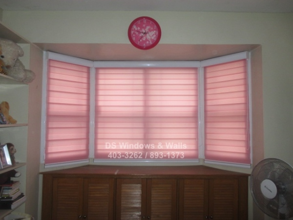 Pink blinds shades